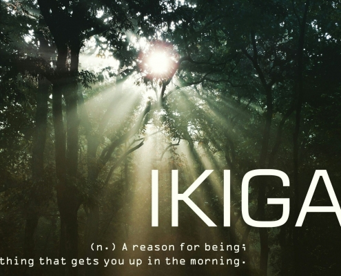 phong cách ikigai